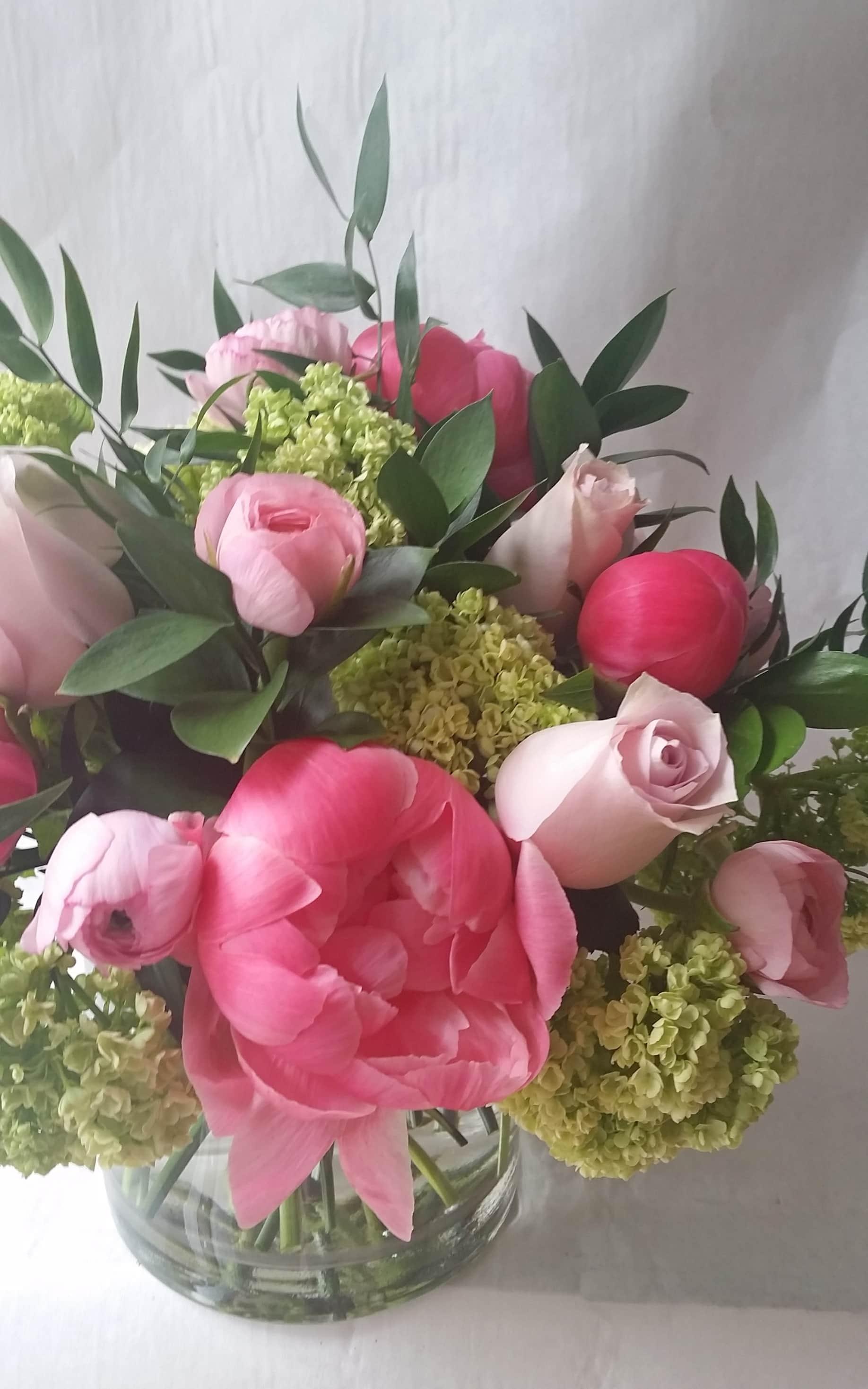 Marguerite Strawberry Fields Flowers Finds